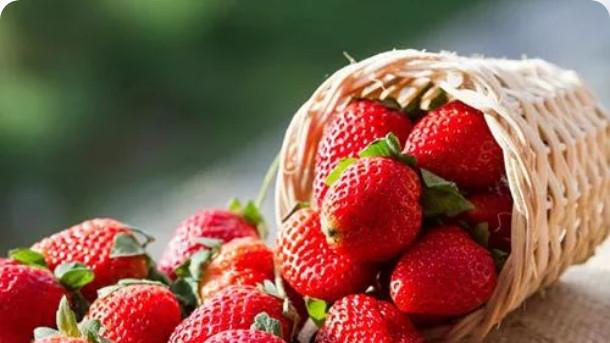 热量比肉还多的水果!舞蹈生减肥期间要回避!