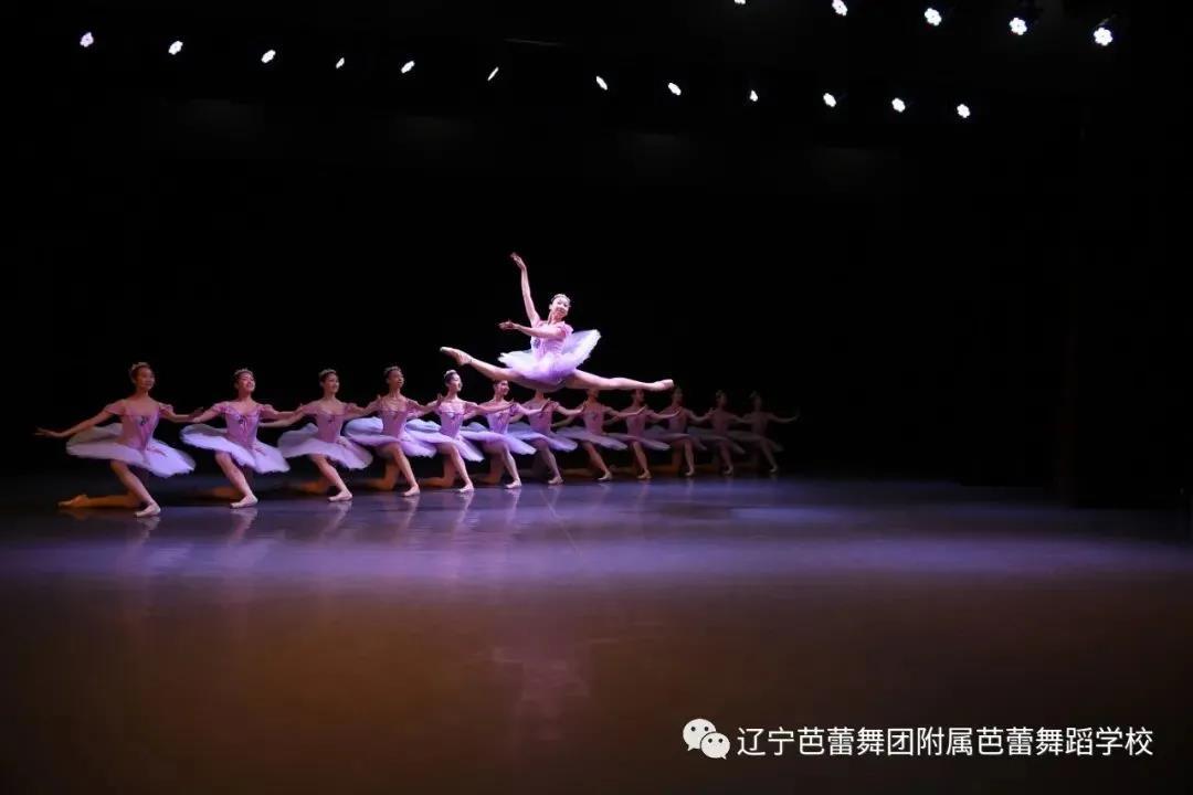 附中招考|辽宁芭蕾舞团附属芭蕾舞蹈学校招生简章